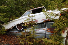 IMG_2673 (Irina Souiki) Tags: rusty crusty cars mcleansautowreckers milton ontario old oldcars
