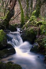 Au rythme du temps (Marc ALMECIJA) Tags: eau water wasser nature riviere river natur wood bois sony rx10 long exposure tarn france