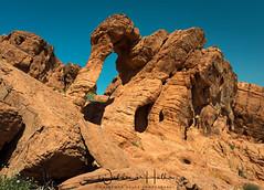 Elephant Rock (Waldemar*) Tags: usa nevada americansouthwest valleyoffire statepark desert arid dry sandstone rocks elephantrock landscape nature scenic scenery