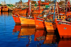 IMG_1382 The colors of the port (Rodolfo Frino) Tags: couleur color colour colorful colourful boat boats ocean mar sea oceano orange blue cielo ciel sky fishing fishingboat gull seagull 017 duplicate mer ship ships eos bright