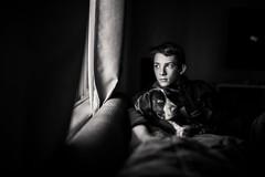 Sit and listen to the rain. (aamith) Tags: blackandwhite bw bnw monochrome 35mm bokeh dof window windowlight naturallight sigmaart sigma dog puppy boy nikon