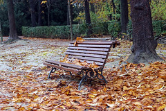 Madrid_0225 (Joanbrebo) Tags: park parque parc parquedelretiro garden jardí jardín madrid spain españa canoneos80d efs1855mmf3556isstm eosd autofocus