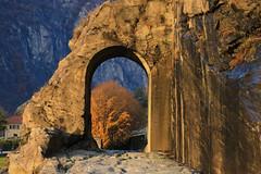 Val d'Aosta - Valle centrale: Donnas, la strada romana delle Gallie: oltre, l'autunno (mariagraziaschiapparelli) Tags: valdaosta donnas stradadellegallie stradaromanadellegallie camminata escursionismo allegrisinasceosidiventa autunno