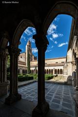 DSC6756 Claustro del Monasterio de Santa María la Real de Nieva, finales del siglo XIV y principios del siglo XV, (Segovia) (Ramón Muñoz - ARTE) Tags: monasterio de santa maría la real nieva claustro claustros