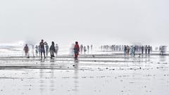 Beach at Coxs Bazar, Bay Of Bengal. (Siddiqui, sayeed) Tags: beach sea bayofbengal