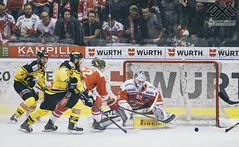 HCB Bolzano vs Vienna (Matthias Egger) Tags: hcbbolzano foxes hockey bolzano icehockey hockeybolzano hcbsüdtirol hcb matthias egger matthiasegger ebel erste bank eis liga salisburgo salzburg red bull redbull villach olimpija ljubljana fehérvár av19 dornbirn vienna innsbruck znojmo klagenfurt linz blackwingslinz