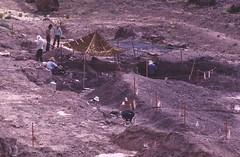Research at the Quarry (BLMUtah) Tags: research clevelandlloyddinosaurquarry utah pricefieldoffice blm bureauoflandmanagement ut dinosaurs learn education interpretive center visitor dinosaur diamond