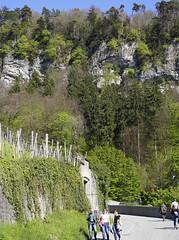 Schattenburg-Weg Feldkirch (Hellebardius) Tags: feldkirch austria österreich oesterreich vorarlberg april springtime frühling