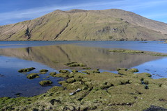 Reflections, Killary Fjord, Leenane, Co Galway, Ireland. (westport 1946) Tags: ireland eire comayo cogalway leenane killaryfjord ridge bluesky mountains mountainside mountain reflections water wasser r335 killaryharbour seashore thesea peaceful tranquil idyllic landscape outdoor derraheeda connacht