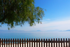 Finding peace in town's center (jimiliop) Tags: sea seascape tree peace calm blue green morning relaxing town hometown kiato greece corinthia korinthiakos fence geometry mist land seaview seafront waterscape