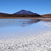 Bolívia, Laguna Hedionda