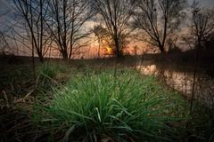 nature (Patryk Krzyzak) Tags: bojanow bridge dusk foto nowadeba patrukkgmailcom patrykkrzyzak podkarpacie poranek ranek spring subcarpatia sunrise wiadukt wiosna wschodslonca