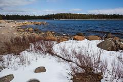 Il reste ... (sosivov) Tags: sweden snow landscape sea bothniansea
