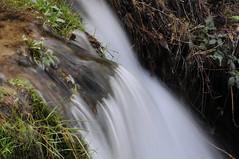 River (川) (mrsjohnketta) Tags: nature spain macro closeup 105mm nikkor nikon d300 water mountain river 山 自然 マクロ 花 虫 色