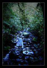Trickle Down Effect (Seeing Things My Way...) Tags: newzealand rapids river stream trickle rocks stones flow valley rainforest