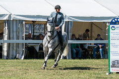 A9908268_s (AndiP66) Tags: peter vonarx velasco dragoner springen hindelbank jegensdorf 2017 29april2017 pferd horse schweiz switzerland kantonbern cantonberne concours wettbewerb horsejumping equestrian sports springreiten pferdespringen pferdesport sport sony alpha sonyalpha 99markii 99ii 99m2 a99ii ilca99m2 slta99ii sony70400mm f456 sony70400mmf456gssmii sal70400g2 amount andreaspeters april