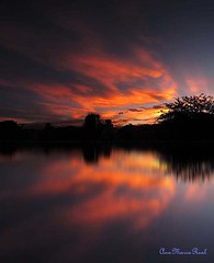 Sunset (anitareal) Tags: ocaso atardecer puestadesol río playa costa reflejos naranja matices cielo nubes foto poema puertorico argentina paisaje sombras intenso airelibre nikon