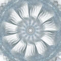 mandala-2 (Trece Ocho Studios) Tags: generativeart mandala alpha costarica code processing actionscript treceocho juancho azul