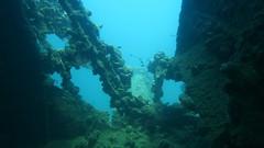 Wreck Diving - Coron, Philippines (James A Leith) Tags: scubadiving coron philippines discoveryislanddivecentre wreckdiving lionfish underwaterphotography kogyomaru
