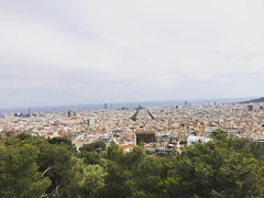 Barcellona dall'alto! 🌳 (lauratintori) Tags: sky clouds cloud sea cityview city house atthetop tree trees colour lauratintoriph iphone7 iphone photography postcard picture pic photo landscape panoramic panorama pointofview view barcelona spain instagramapp square squareformat iphoneography lark