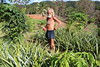 Queensland (@BAM_S) Tags: cairns permaculture frutarian