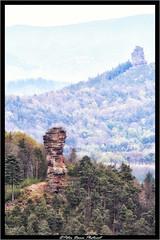 Treffen der Giganten (Peter Daum 69) Tags: fels rock licht light landscape landschaft scenery natur nature canon eos berge mountain wald forest turm tower nadel felsnadel