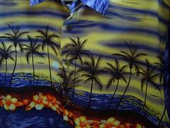 wm47_sydney_04 (WM47) Tags: art beach bondi skyline zoo graffiti coconut sydney australia koala harborbridge amaze beastman streeetart horphe ontre tagspalmtrees