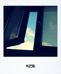 "#DailyPolaroid of 2-6-13 #256 • <a style=""font-size:0.8em;"" href=""http://www.flickr.com/photos/47939785@N05/8975575581/"" target=""_blank"">View on Flickr</a>"