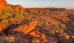 Kings Canyon at Sunset (Serendigity) Tags: sunset nature rock nationalpark desert australia canyon outback kingscanyon northernterritory watarrka