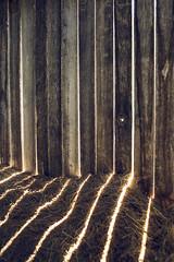 morning light. (EXPLORED 6/17/13) (stevenbley) Tags: urban rot abandoned canon graffiti newjersey rust bokeh dam decay nj urbanexploration waterdamage mold grime tunnels peelingpaint decayed mildew asbestos urbex tocksisland 5dmarkii canon5dmarkii guerillahistorian tocksislanddamproject