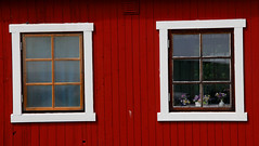 skåne sweden schweden sverige suede scania hamn borstahusen landskrona hamnen scanie
