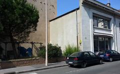 pandaLyon (Tuco#) Tags: street art stencil panda pochoir tuco woodshape