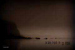 Mlancolie...... (crozgat29) Tags: sea seascape beach nature canon landscape sigma paysage plage brume jmfaure crozgat29