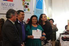 Feria de la Mujer en Llanquihue, octubre 2013 c
