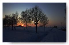 Abendstimmung im Schnee (Rolf Pahnhenrich) Tags: sonnenuntergang sunset canoneos5dmarkii schneeeis schnee eiszeit landschaft eis winter schneelandschaft westfalen winterzeit rolfpahnhenrich abend
