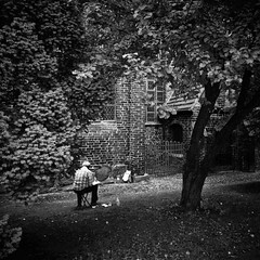 (miriess) Tags: street trees shadow people church monochrome garden painting drawing painter rgen vignette contrasts contrasty quadratic rugia rugiaisland