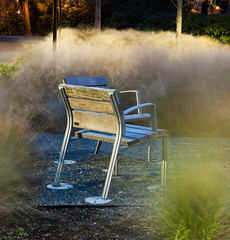 Chair and Grass at dusk 1 (mfenne) Tags: seattle leica fall grass washington university phil dusk m8 dralaimagesmarlowefenne