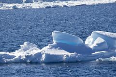 Antarctica - Day four0540 (GLRPhotography) Tags: landscape antarctica iceberg 100400 weddellsea