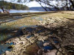 lipno (ondey) Tags: old lake nature water coast boat fishing dam south shore weathered bohemia voda angler šumava loď jezero příroda lipno jižní čechy přehrada stará loďka oprýskaná lipenská břeh rybářství člun rybář pobřeží lipenské