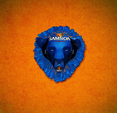 Origami création - Didier Boursin - Samson