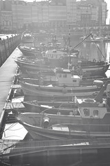Puerto de La Corua (Gabriel Bussi) Tags: espaa port puerto boat fishing fisherman spain corua barco ship fishermen galicia porto bateau hafen pesca espagne schiff fischer spagna pescador pescatore pescadores deportivo acorua lacorua  pescatori galizien fischerei