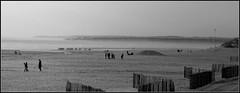 Plage du Touquet, un jour de brume (Guillaume DELEBARRE) Tags: blackandwhite bw mist france beach misty noiretblanc sony nb alpha hazy nordpasdecalais plage brume letouquet a65 sonya65 sonyalpha65 alpha65