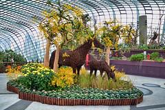 Year of the Horse Floral Display #4 (chooyutshing) Tags: festival singapore display chinesenewyear celebrations attractions 2014 marinabay flowerfield baysouth flowerdome horsesculptures gardensbythebay nationalparksboard yearofthehorsefloraldisplay lunarnewtear