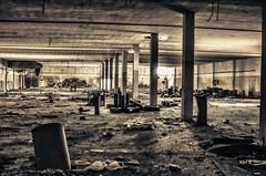 Abandoned Factory (ChristosAvg) Tags: abandoned rooms cows empty greece fields thessaloniki factories decadance sindos kalochori chalastra halastra