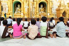 Children Pray at Shwedagon Pagoda 700 (Dean Harte - www.deanharte.com) Tags: buddha shewadonpagoda children pray prayer buddhism zen yangon rangoon myanmar burma peaceful serene serenity worship yoga namaste religion religious beautifulbuddha peacefulbuddha serenebuddha nirvana ohm divine divinity boeddha enlightenment buddhistreligion karma mantra spa reborn rebirth siddhartha gautama gautamasiddhartha gautamabuddha relax mindful mindfulness bliss bodhisattva meditate meditation