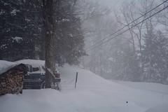 2017_0314Blizzard0004 (maineman152 (Lou)) Tags: westpond snow snowstorm northeaster blizzard nature naturephoto naturephotography winter winterweather march maine