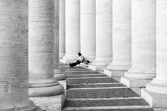 knowledge (*magma*) Tags: colonnato uomo lettura man reading columns knowledge conoscenza sapienza