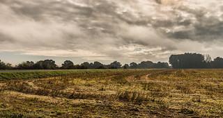 morning landscape (France 4.)-1079