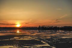 Sunset over Gale Island (Mercenaryhawk) Tags: canon 5ds r 5dsr eos 24105 f4l lake minnetonka minnesota mn landscape sunset gale island evening spring ice melting trees water cold orange