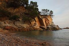 Cala Llevadó (Albert T M) Tags: calallevadó cala tossademar costabrava laselva mediterrani catalunya catalonia